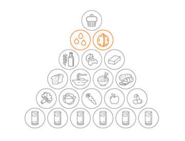 Vegane Ernährungspyramide: Fette